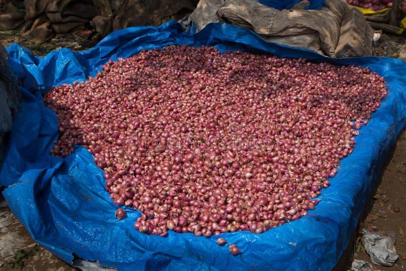 Pile des oignons rouges ? un march? Inde de nourriture de bord de la route photos stock
