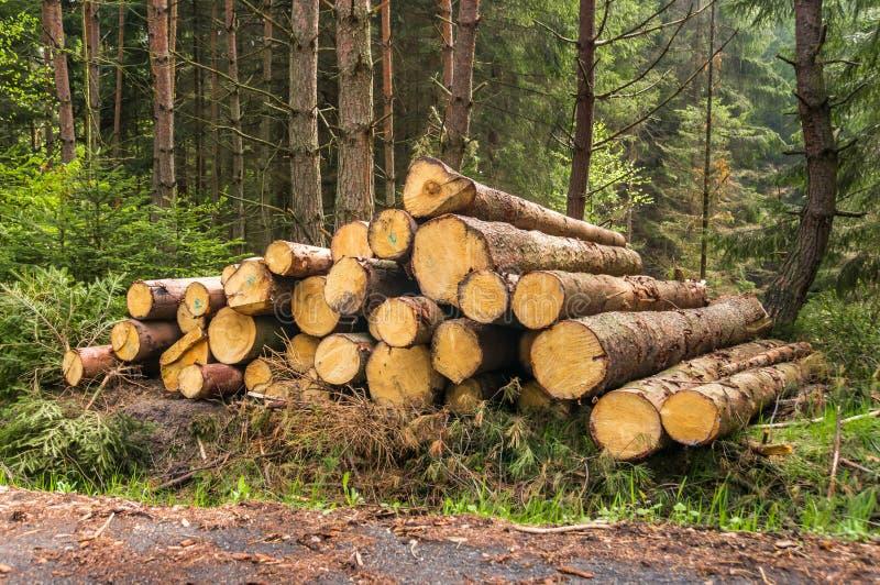 Pile des rondins en bois images stock