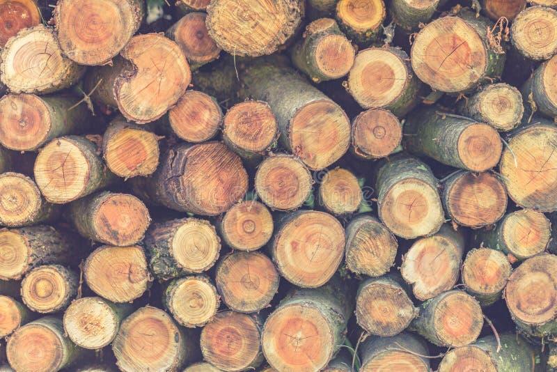 Pile des rondins en bois, pile en bois sur des couleurs de nature image stock