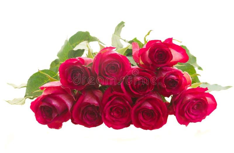 Pile des roses roses photographie stock libre de droits
