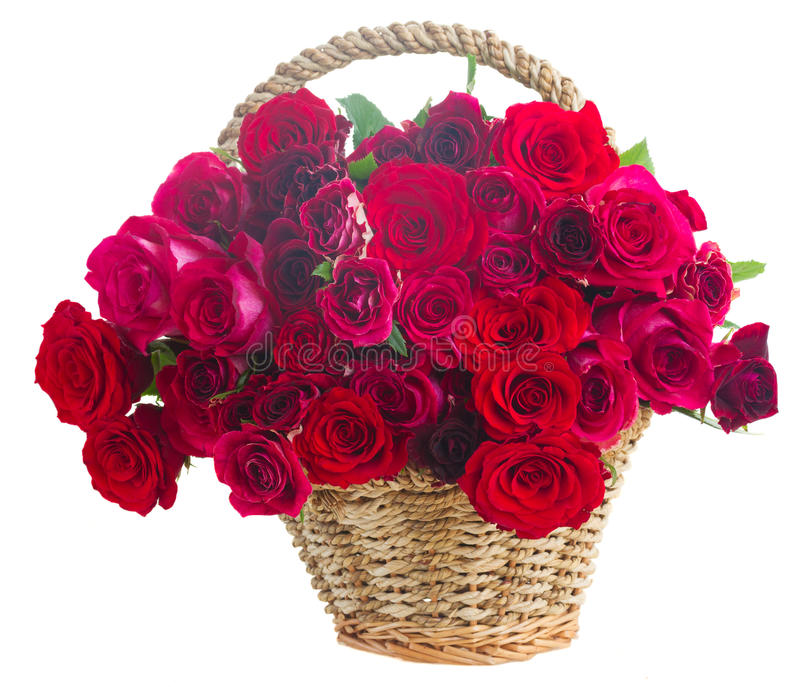 Pile des roses roses photo stock