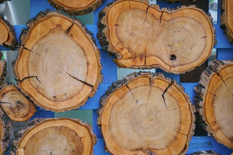 Pile des tronçons d'arbre texture ou de la structure en bois pour le fond photos stock