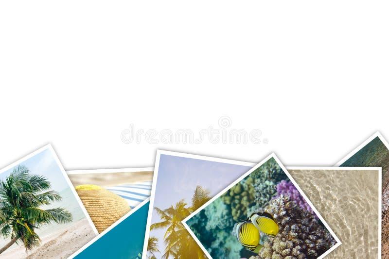 Pile des vacances d'apparence de photos, tropiques, mer, ?t?, monde sous-marin illustration libre de droits