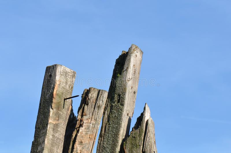 Old wood beams stock photography