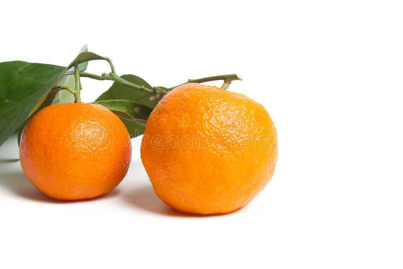 Pile di mandarini con foglie isolate su fondo bianco fotografia stock