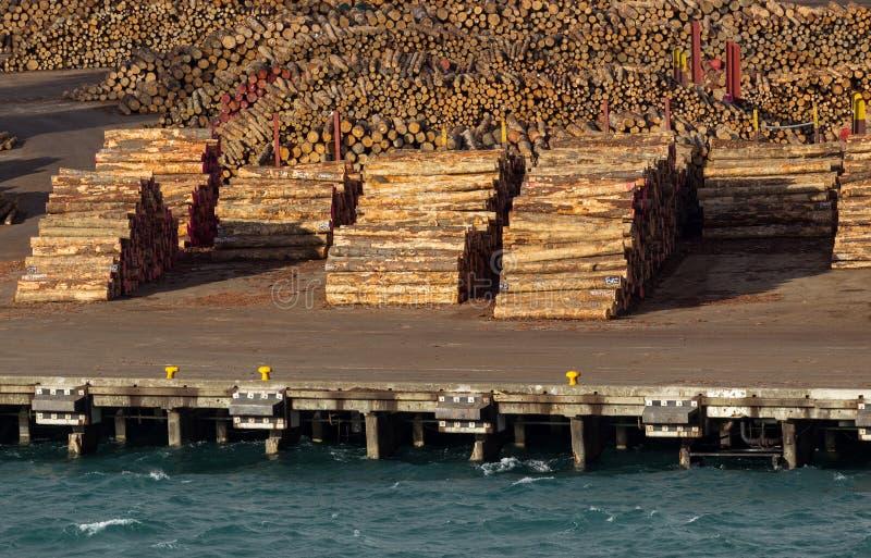 Pile di tronchi di albero pronti per l'esportazione dal mare fotografia stock