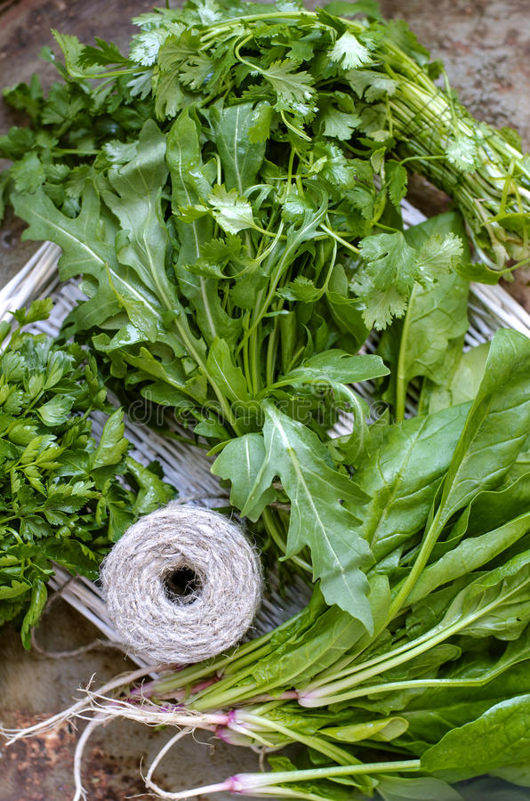 A Pile Of Different Types Of Fresh Herbs Stock Image Image