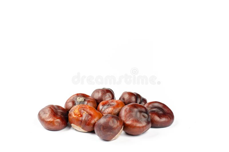 Pile of dried chestnuts on white background stock photos