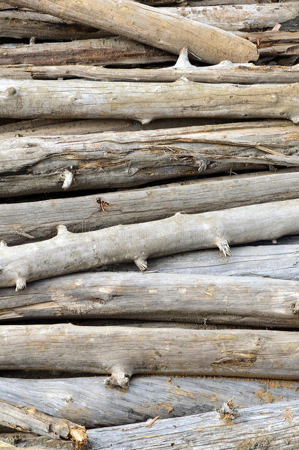 A pile of driftwood. A stacked pile of driftwood stock photo