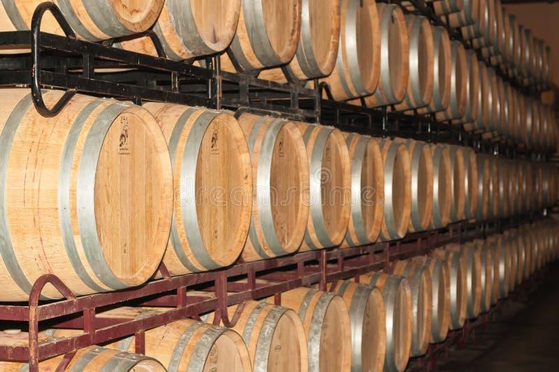Pile e file di barilotti di vino in cantina spagnola fotografie stock libere da diritti
