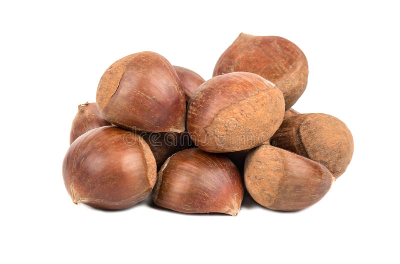 Pile edible chestnuts. Pile fresh edible chestnuts on a white background stock image