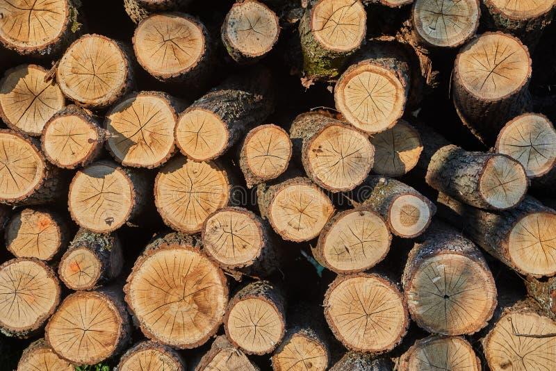 Pile en bois de rondin images stock