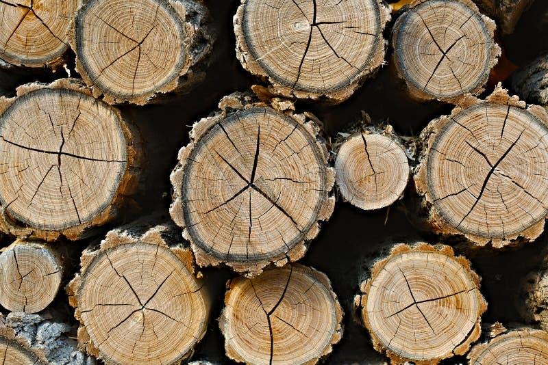 Pile en bois de rondin image libre de droits