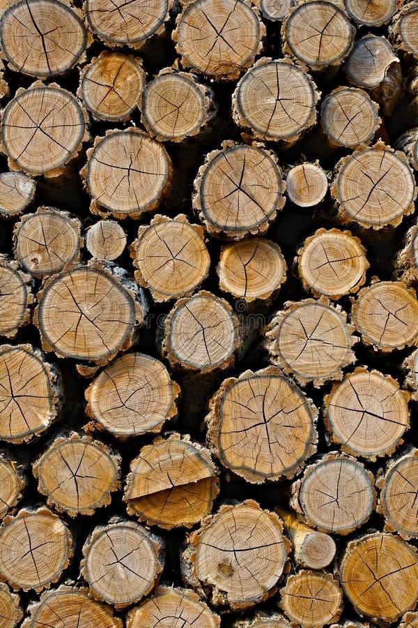 Pile en bois de rondin photo stock