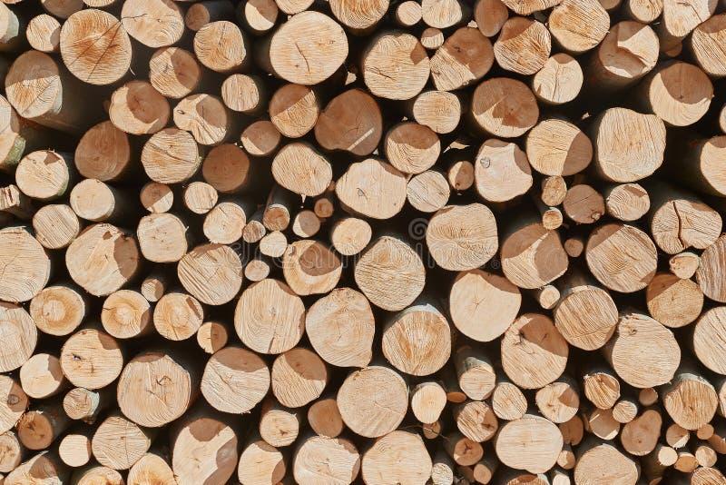 Pile en bois de rondin photographie stock libre de droits