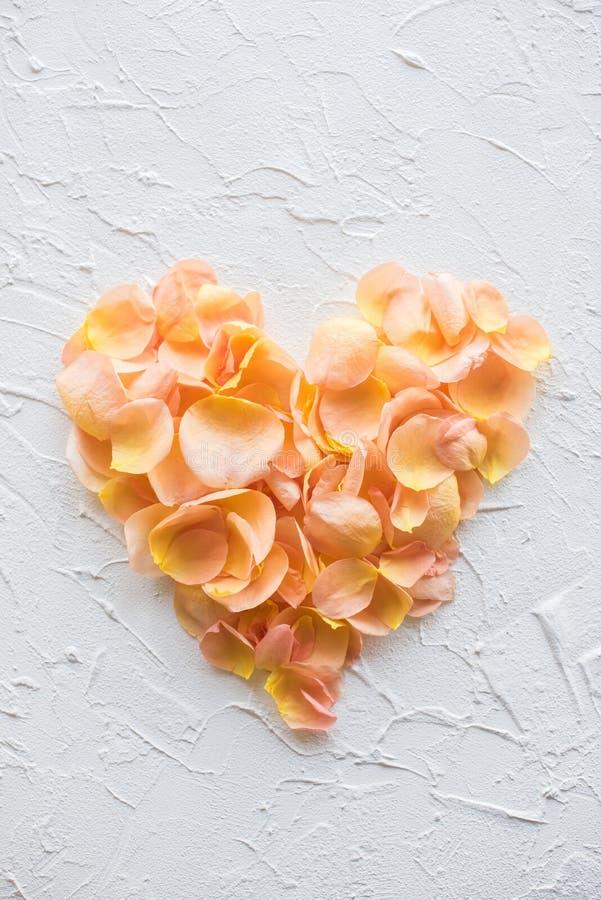 Pile en forme de coeur des pétales de rose sur le blanc photos stock