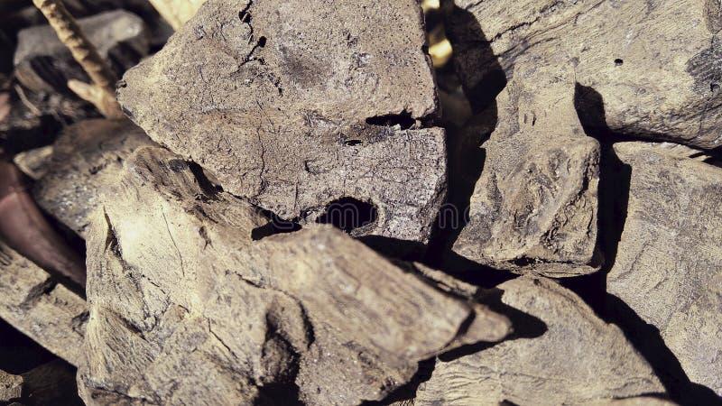 Pile en gros plan des photos de charbon de bois images stock