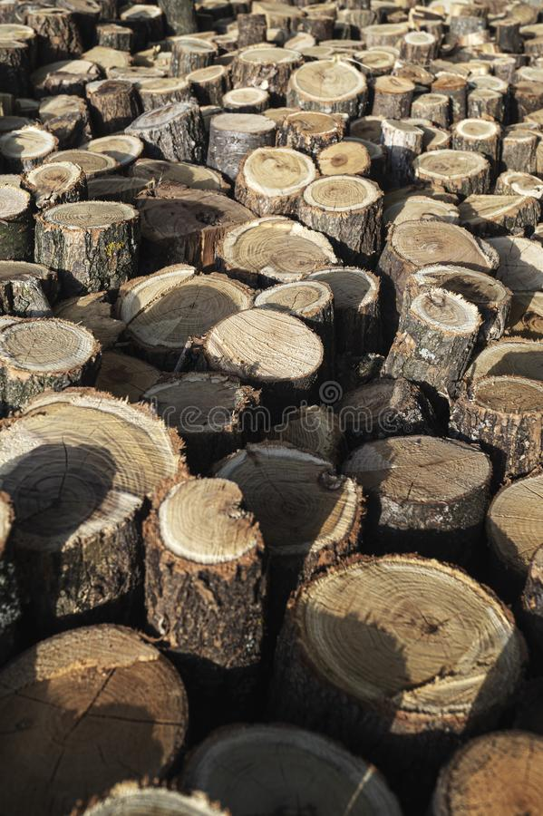 Pile of Firewood.Firewood background. Stacks of Firewood. Preparation of firewood for the winter. Pile of Firewood.Firewood background stock photo