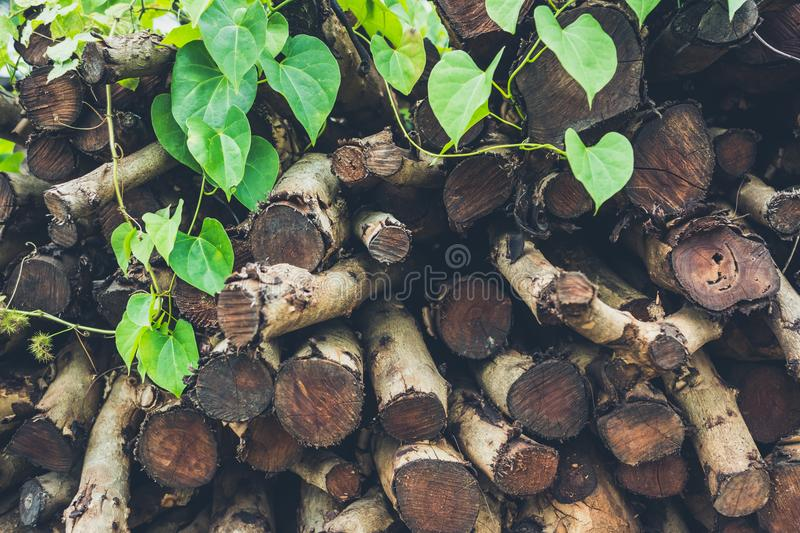 Pile firewood prepared for fireplace stock photos