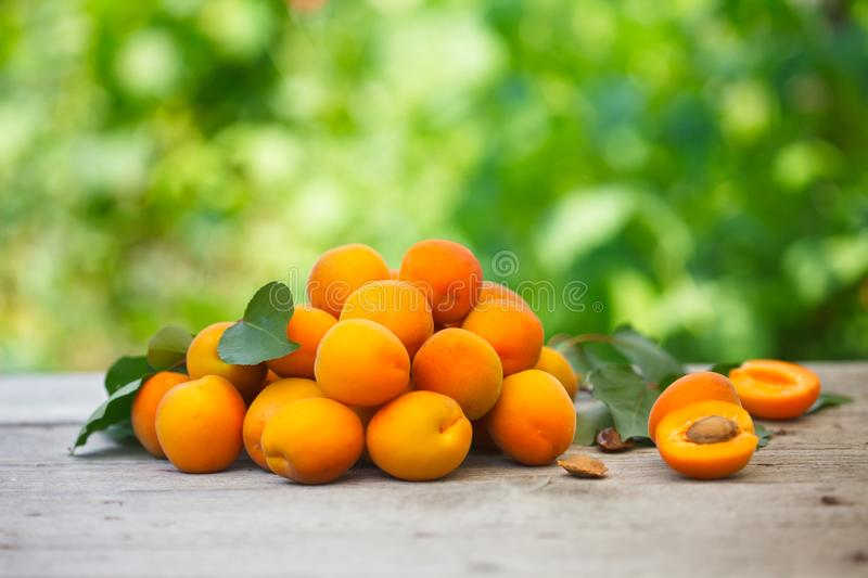 Pile of fresh apricots with aprcicot leaves on old wooden table stock photos