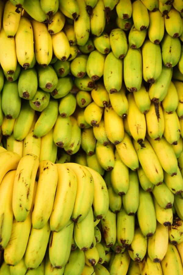 Pile of fresh bananas royalty free stock photos