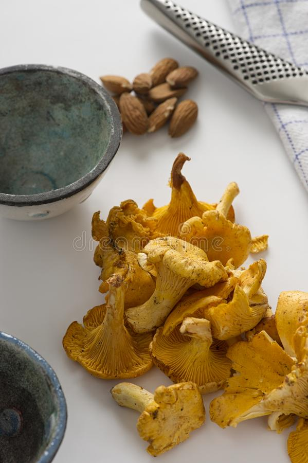 Pile of fresh chanterelle mushrooms on a table royalty free stock images