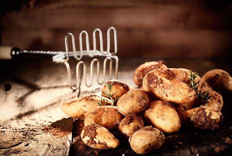 Pile of fresh earthy potatoes royalty free stock photography