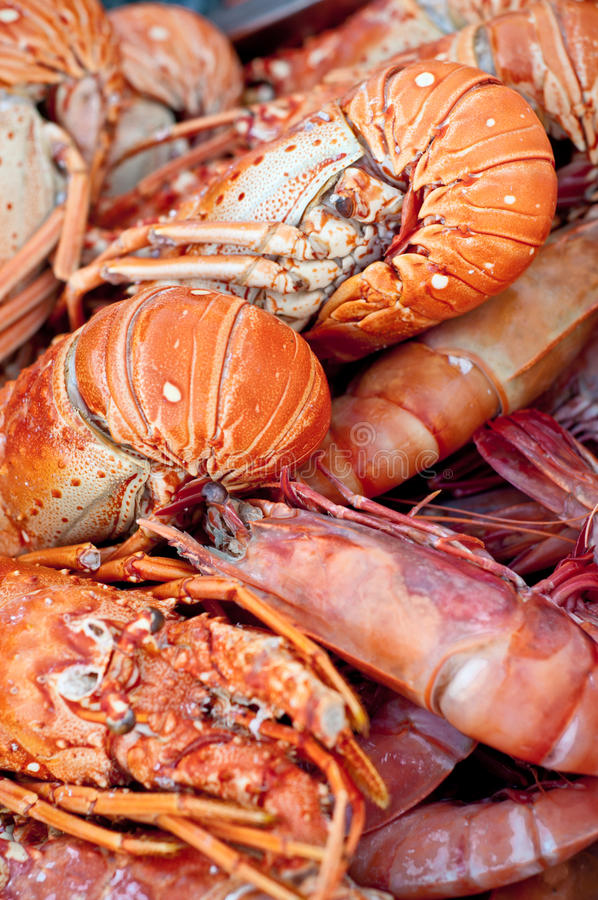 Pile of fresh lobsters royalty free stock photos