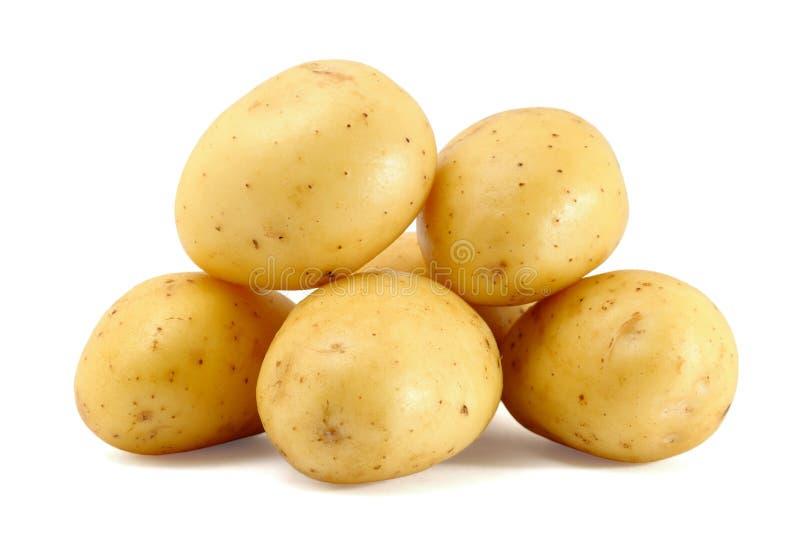 Pile of fresh potatoes stock photography