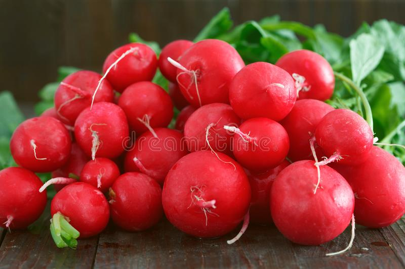 Pile of fresh red radishes royalty free stock photos