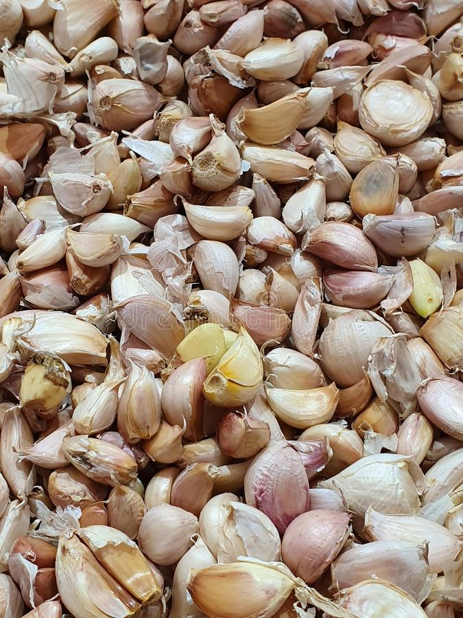 Pile of garlic in the market royalty free stock photos