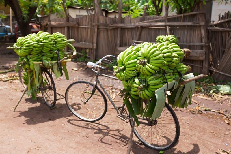 Pile of green African bananas stacking on bicycle at fresh market in Mto wa Mbu village, Arusha Region, Tanzania. Environmental-friendly way to transport royalty free stock photo