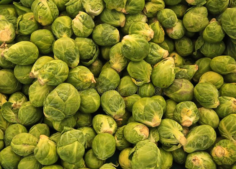 Brussel sprouts vegetables. Pile of green fresh healthy Brussel sprouts at the farmers stock photos