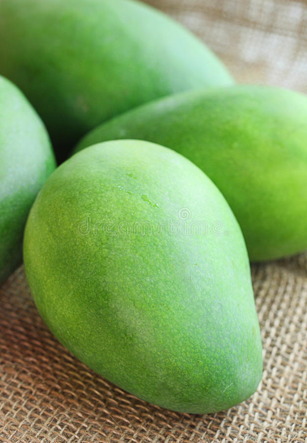 Pile green fresh mango stock image