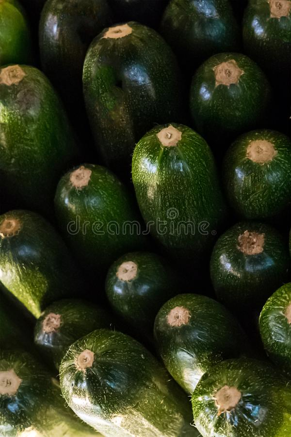 Pile of green zucchini many bright vegetables end background close-up base pattern stock photo