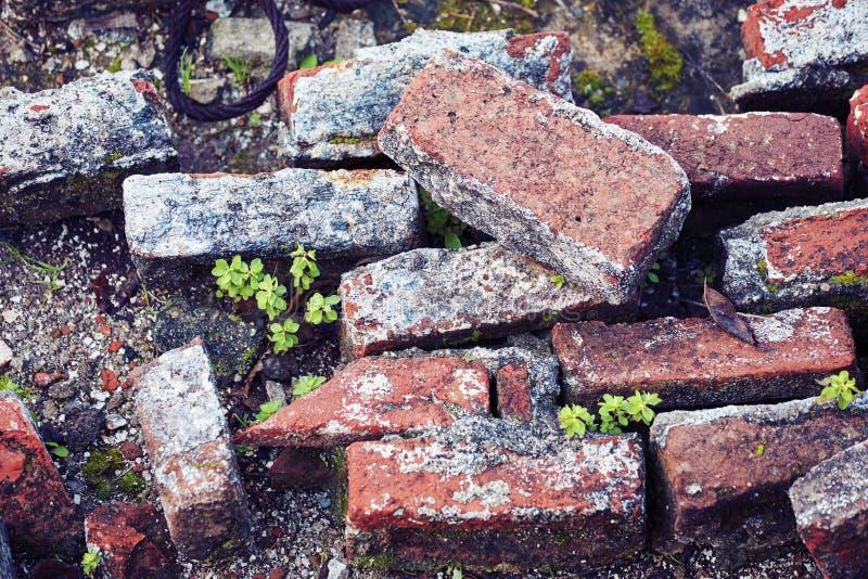 Pile haute étroite des briques rouges de vieille blocaille des ruines d'un bâtiment démoli photo libre de droits