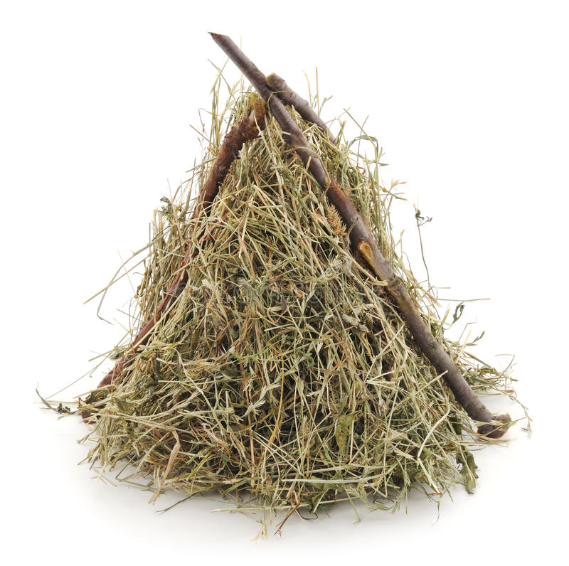 Pile hay. Pile hay on a white background royalty free stock images