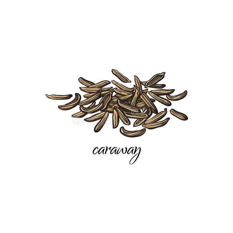 Pile, heap of dried caraway, cumin seeds stock illustration