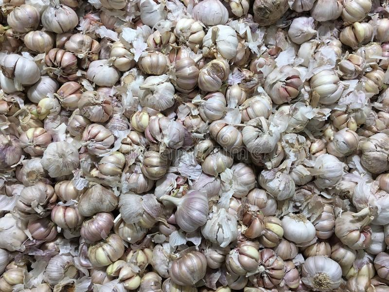 A pile of incomplete garlic supermarket to sell. A pile of millet, grain, our food, give us health royalty free stock photography