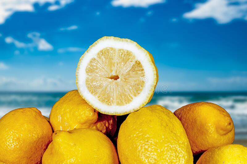Pile of lemons by the sea royalty free stock photo