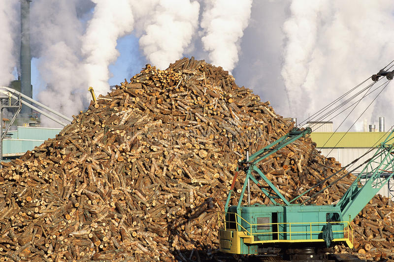 Download Pile of logs stock photo. Image of environment, mill - 23161870