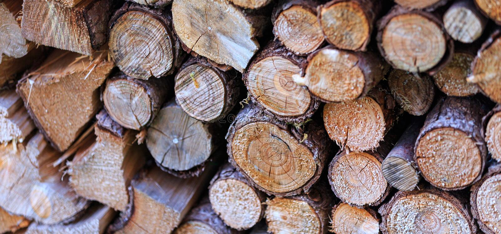 Pile Of Logs Free Public Domain Cc0 Image