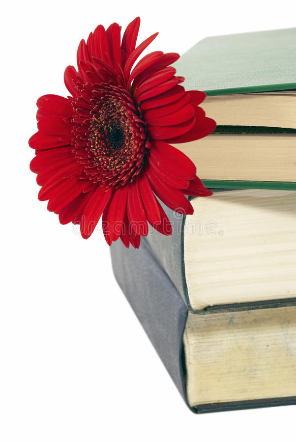 Free Pile Of Books With A Flower. Royalty Free Stock Images - 15345109
