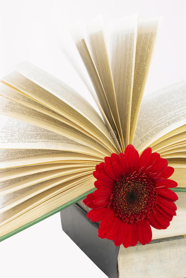 Free Pile Of Books With A Red Flower. Royalty Free Stock Photos - 15345128