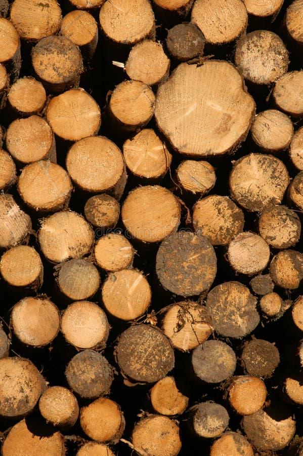 Free Pile Of Logs Royalty Free Stock Image - 360646