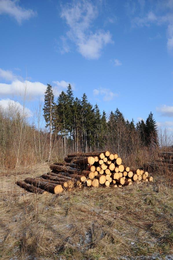 Free Pile Of Wood Stock Image - 18325921