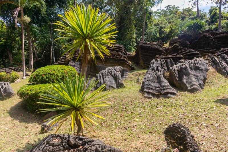 Pile of old and giant rock near the mountain. At thailand stock photography