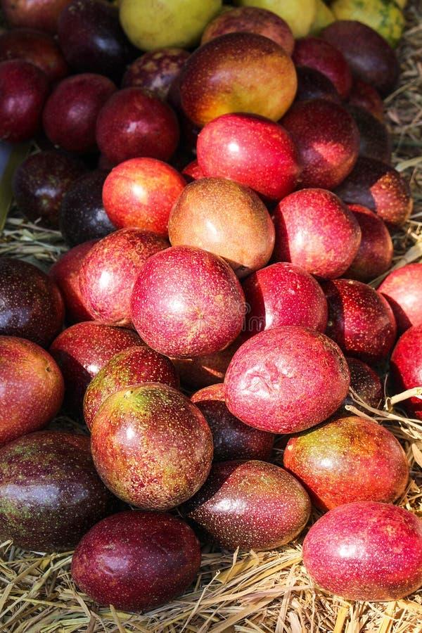 Pile organique colorée de fruit de passion rouge sur le fond de riz de paille photographie stock