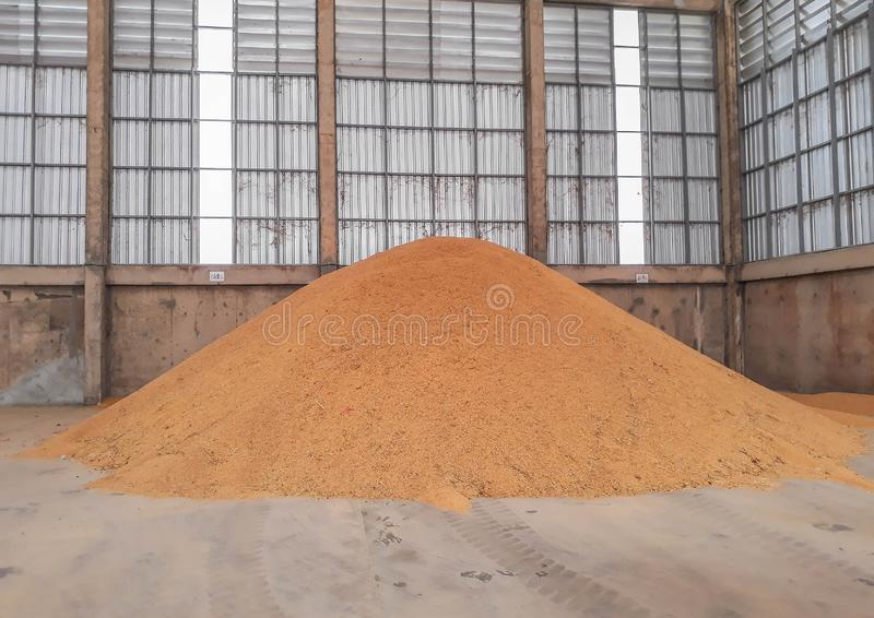 A pile of paddy rice seeds, rice stock seeds at the mill, to oven heat, containment rice seed in the big sack stock photography
