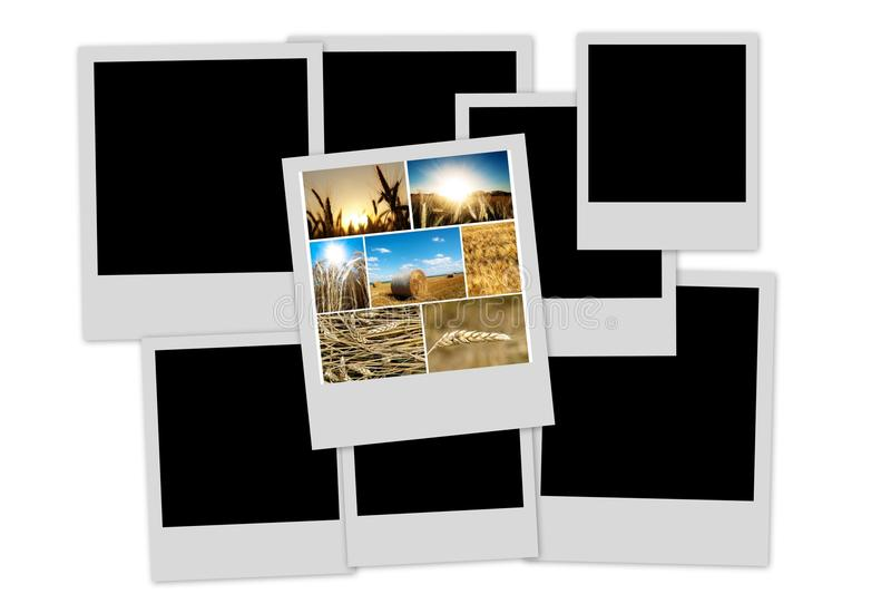 Pile of pictures royalty free stock image
